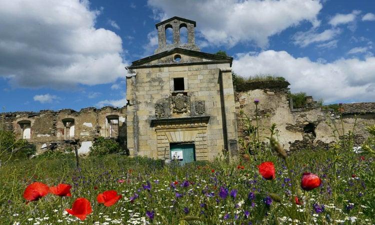 Blumenwiese Extremadura