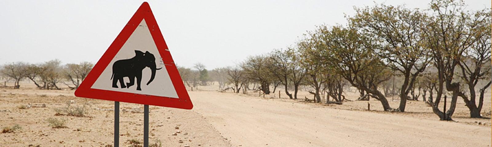 Afrika_04