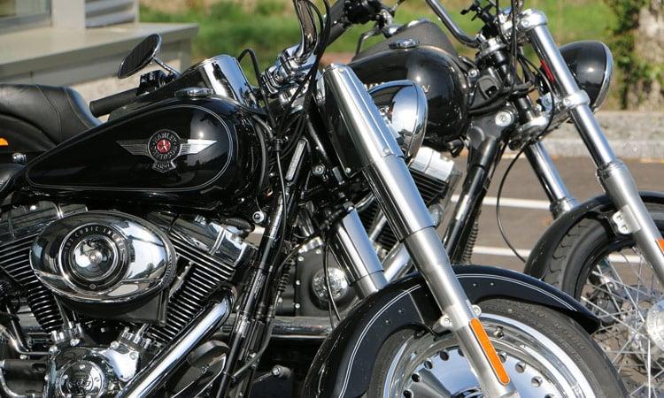 Unsere Harleys stehen bereit