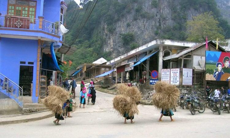 Die Frauen tragen das Stroh durchs Dorf