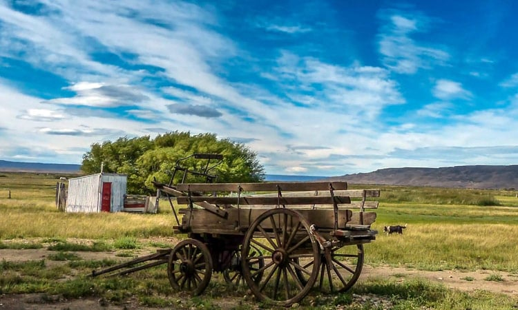 Alter Pferdewagen - Estancia de La Angostura