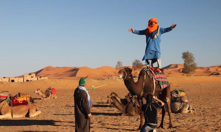 Beduine steht auf seinem Dromedar