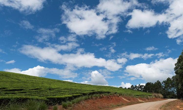 Auf dem Weg von Nyanga nach Bvumba