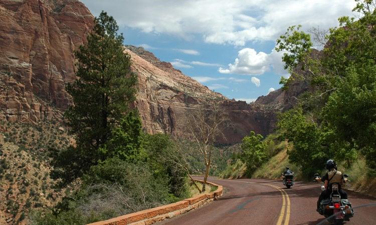 Straße durch den Zion National Park