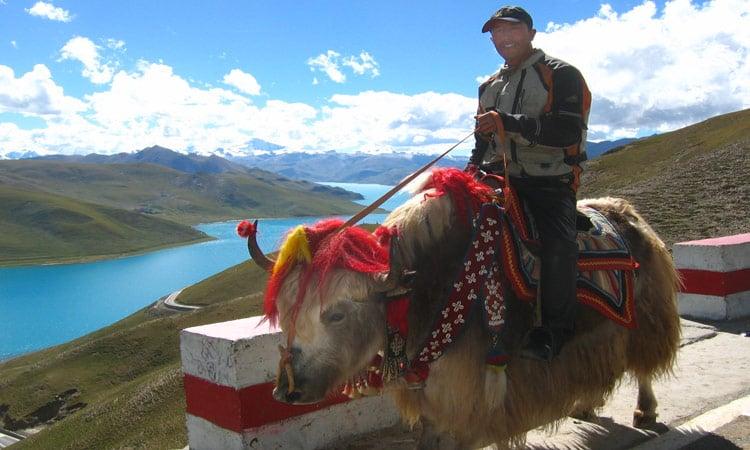 Stolzer Tibeter reitet auf einem geschmückten Yak
