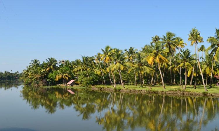 Palmenstrand Kerala
