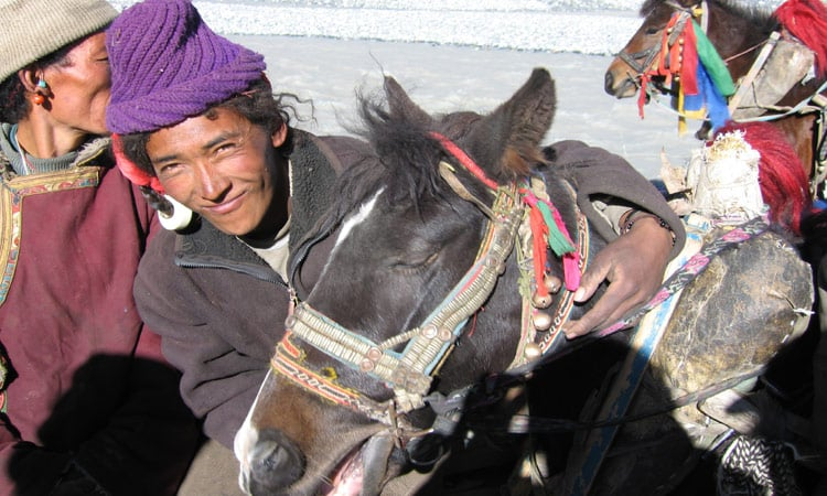 Tibetaner mit Pferd