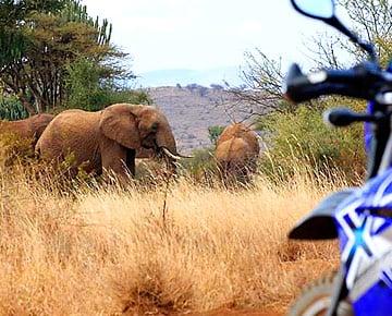 Motorradreisen in Afrika