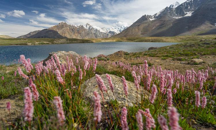 Bergpanorama in Zanskar