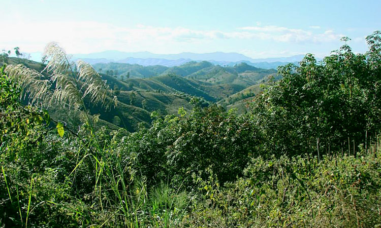 Blick über die Berglandschaft