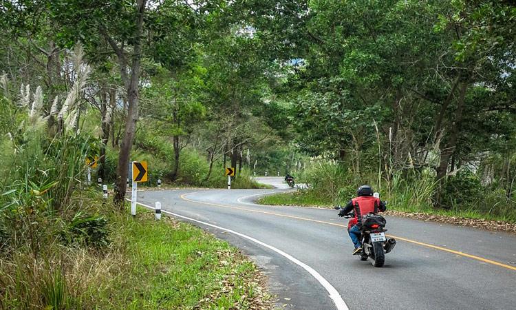 Schöne Strecke durch den Dschungel