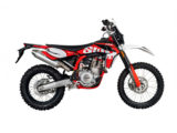 SWM RS 300