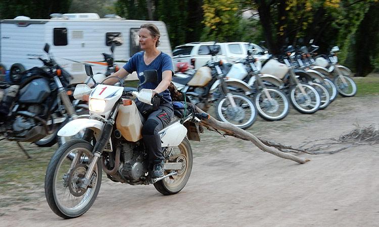 Holz holen Biker style