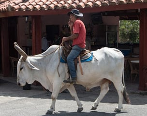 Abenteuer Ost-Kuba