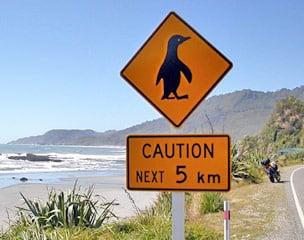 Vorsicht Pinguine